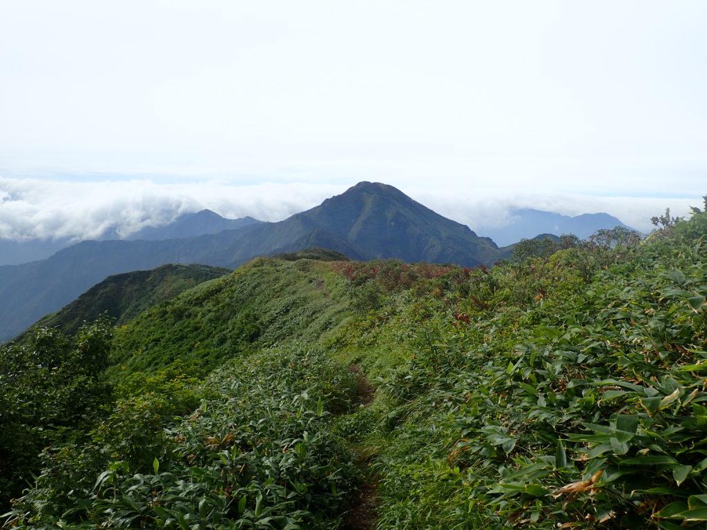 越後駒ヶ岳から見る中ノ岳