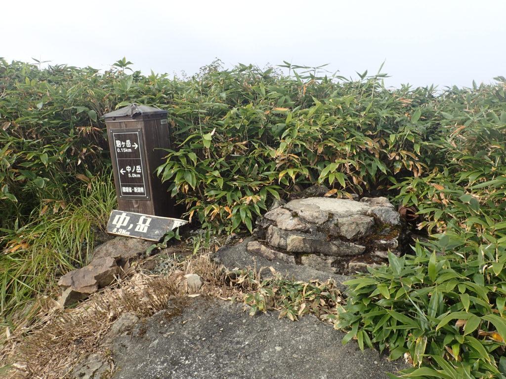 越後駒ヶ岳と中ノ岳の分岐
