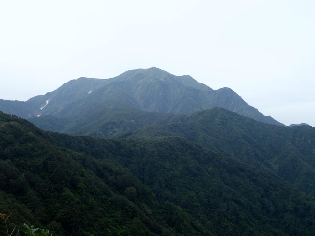 枝折峠ルートから見上げる越後駒ヶ岳山頂方面