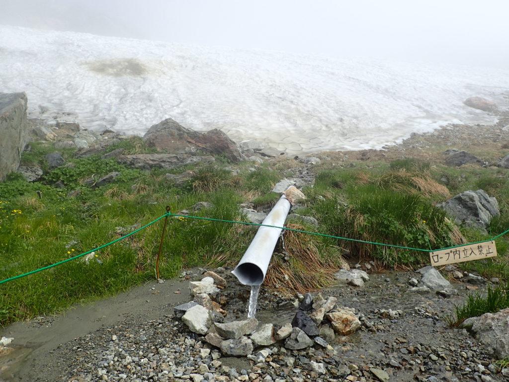 白馬岳の雪渓からの雪解け水