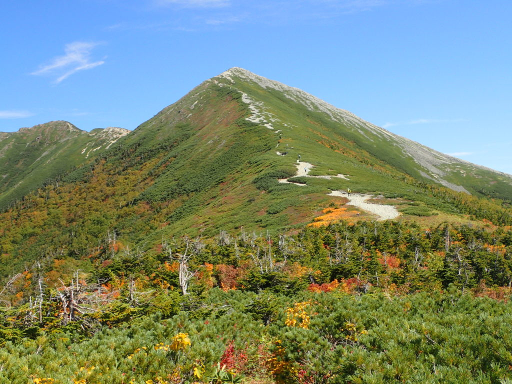 種池山荘側の稜線から見上げる爺ヶ岳南峰