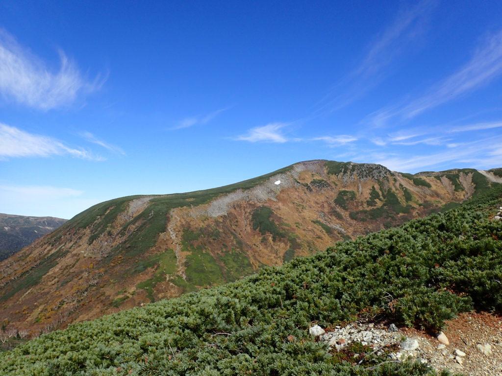 鷲羽岳登山道から見る祖父岳