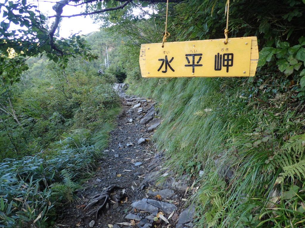 爺ヶ岳柏原新道の水平岬