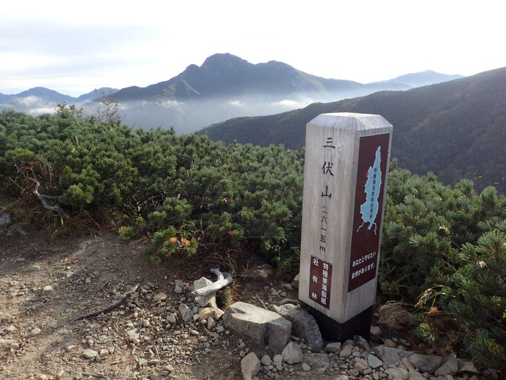 三伏山山頂から見る塩見岳