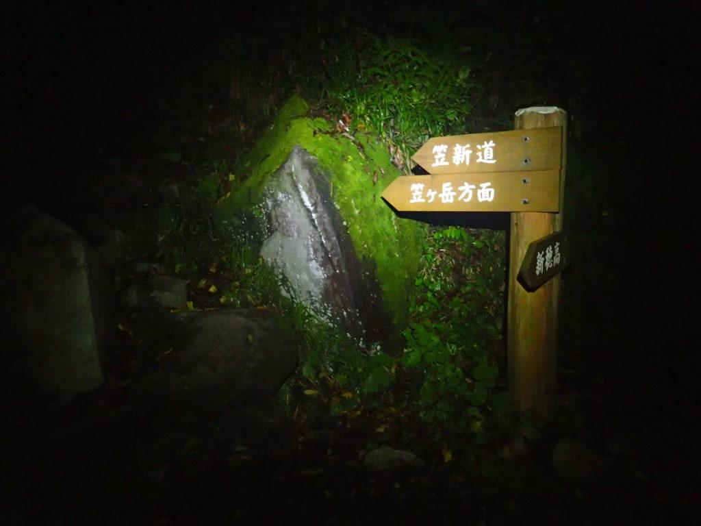 左俣林道の笠新道入口