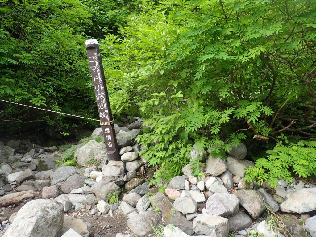 トムラウシ山のコマドリ沢分岐