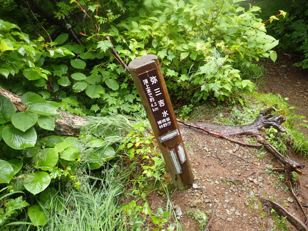 羅臼岳の岩尾別ルートの弥三吉水
