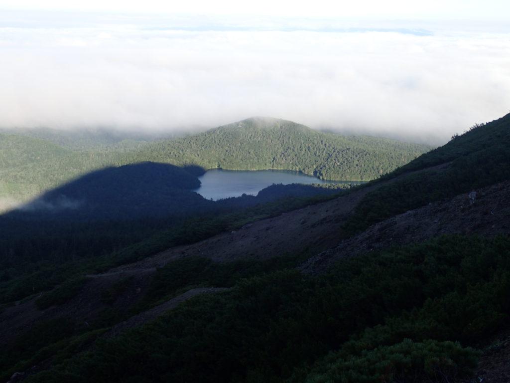 雌阿寒岳登山道から見るオンネトー