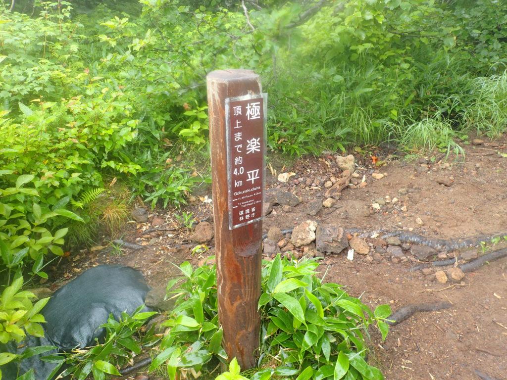 羅臼岳の岩尾別ルートの極楽平