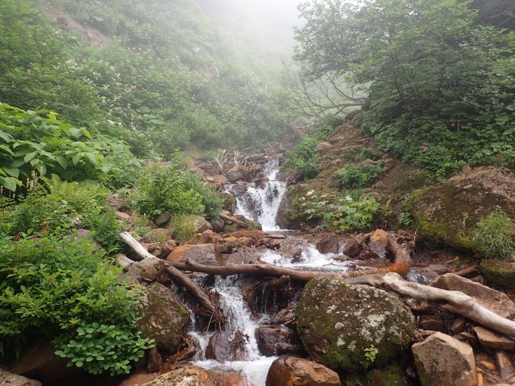 斜里岳の旧道コース登山道