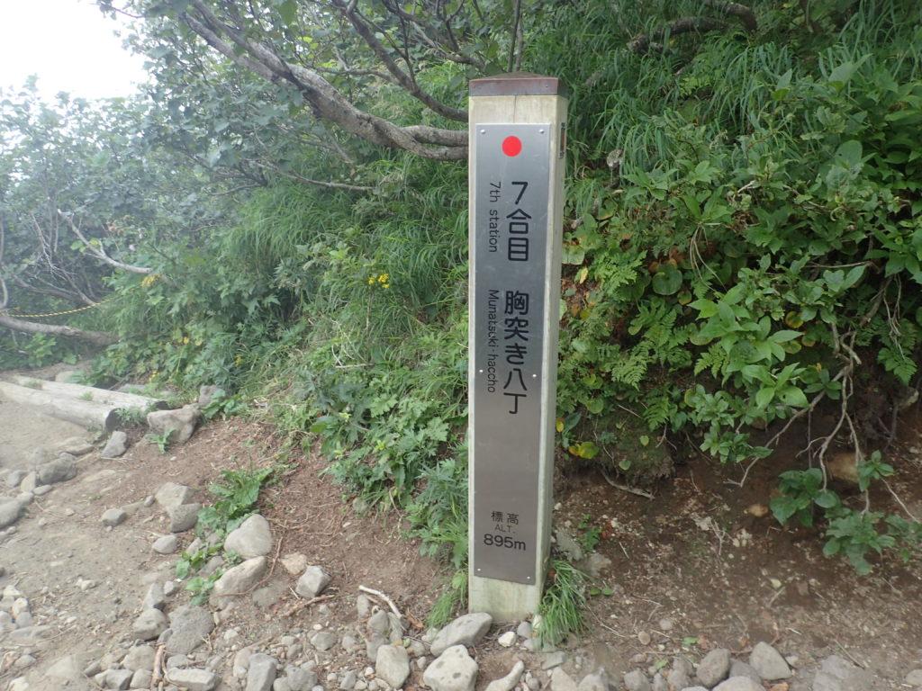 利尻山の鴛泊コース登山道の7合目胸突き八丁