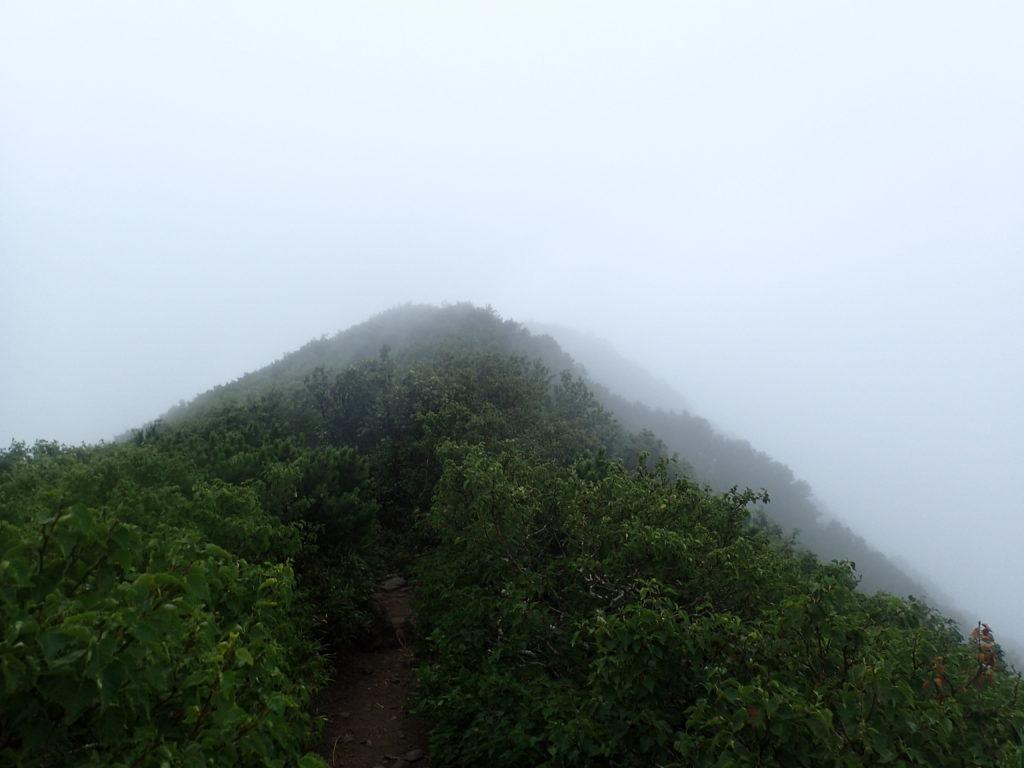 利尻山の鴛泊コース登山道