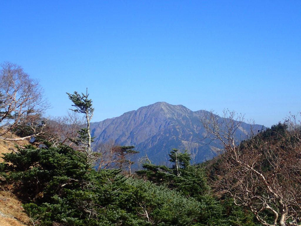 光岳登山道から見る聖岳