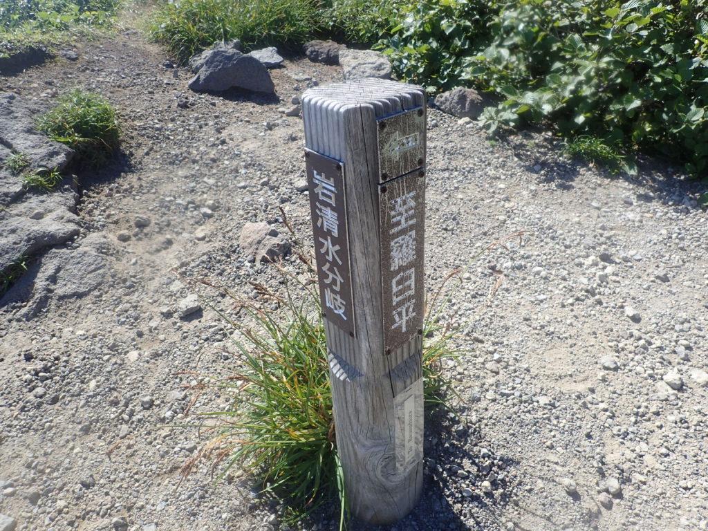 羅臼岳登山道の岩清水分岐