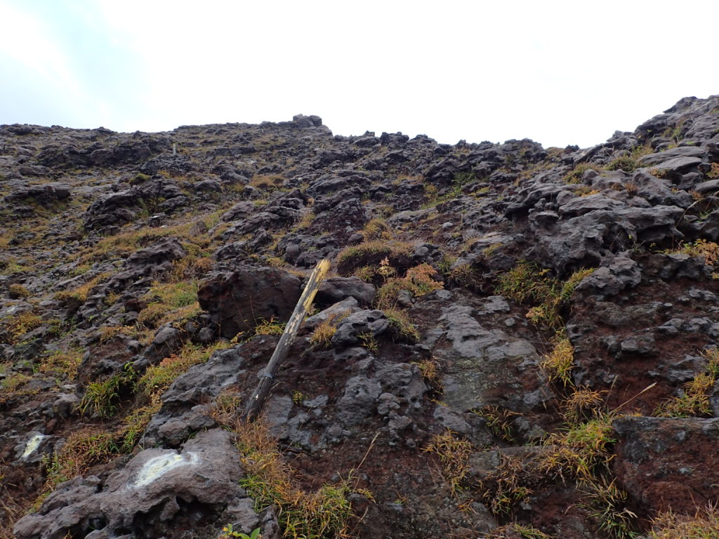 阿蘇山の仙酔尾根登山道