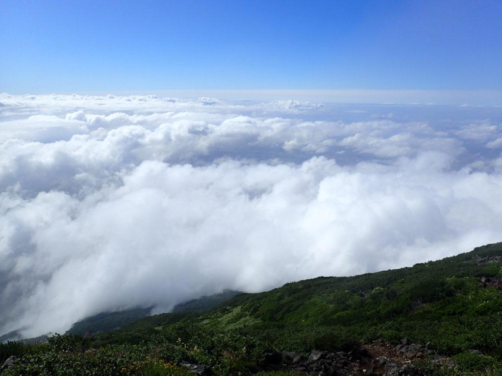 羊蹄山から見る雲海