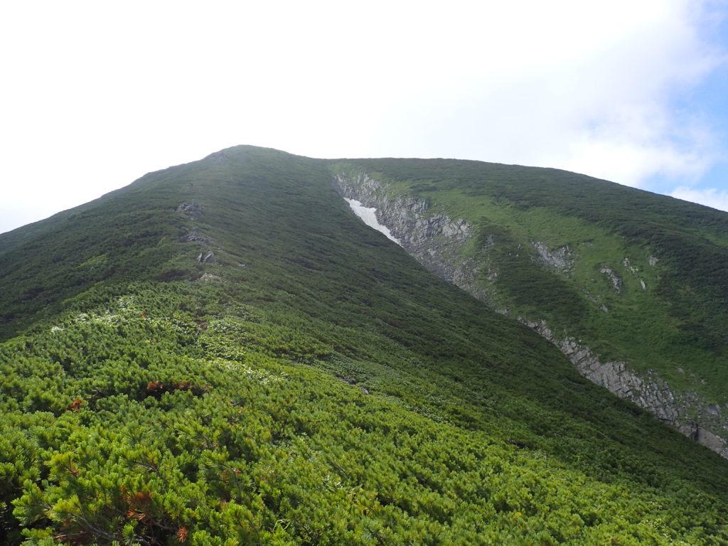 幌尻岳と戸蔦別岳の間の肩方向から振り返る幌尻岳方向