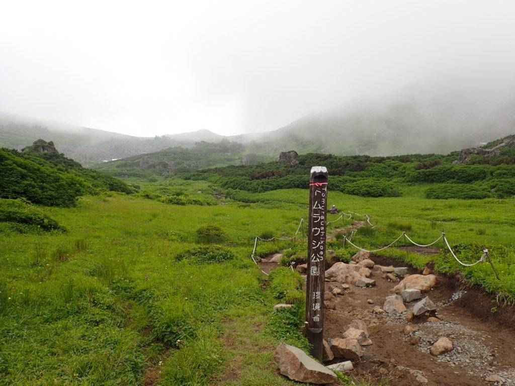 トムラウシ山登山道のトムラウシ公園