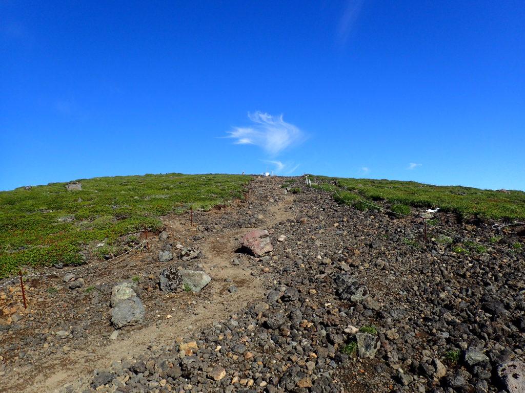 後旭岳方向の登山道から見上げる旭岳山頂方向