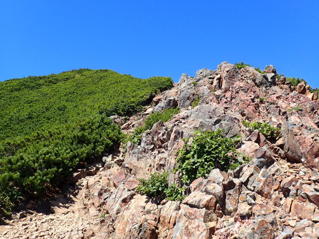 斜里岳の山頂直下の登山道