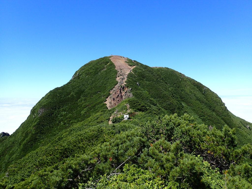 斜里岳の山頂