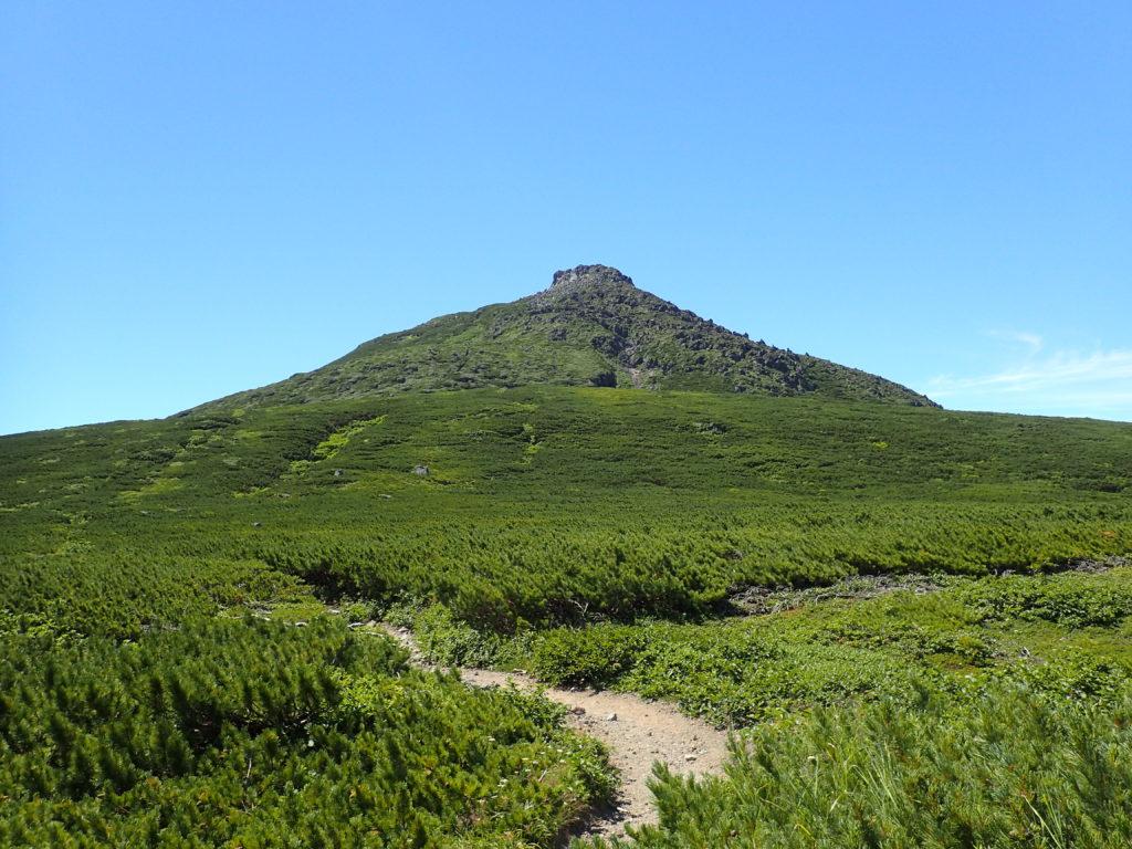 羅臼平付近からみる羅臼岳山頂
