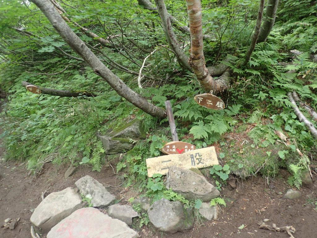 斜里岳の旧道コース登山道の下二股