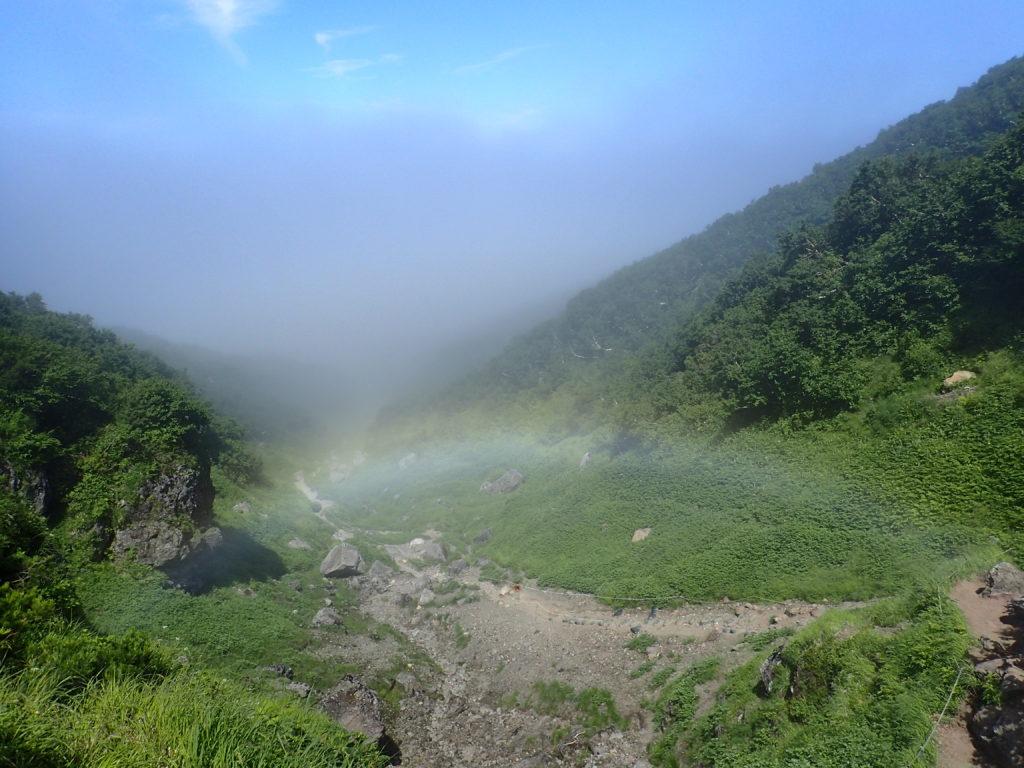 羅臼岳の岩尾別ルート登山道の虹