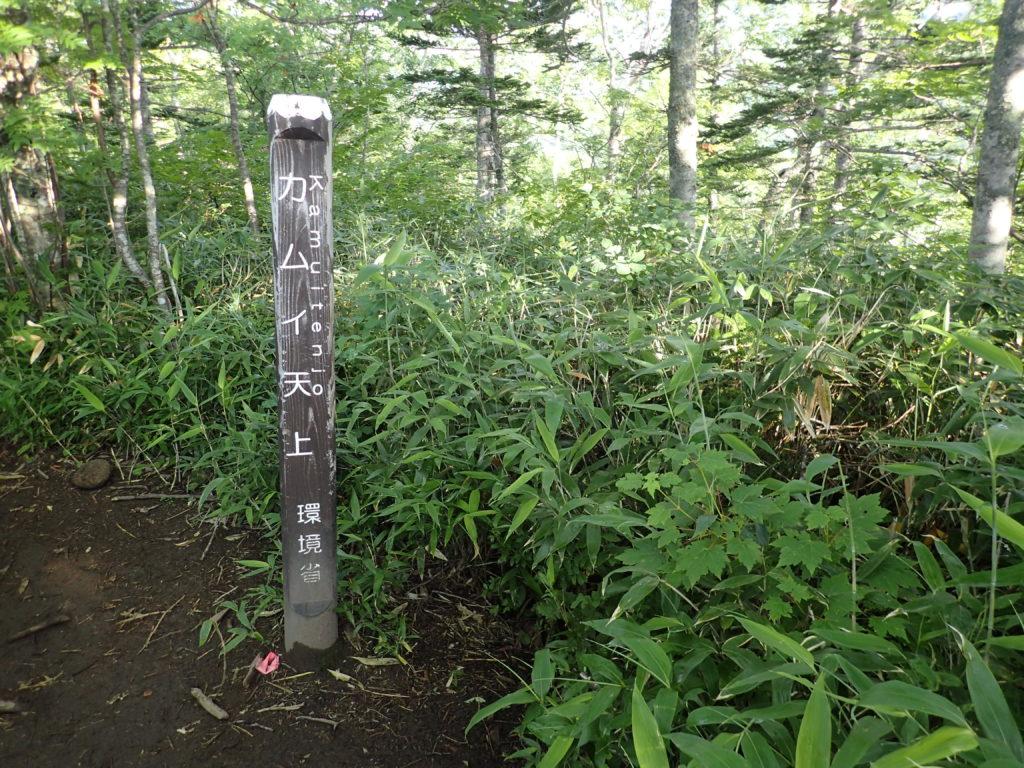 トムラウシ山登山道のカムイ天上