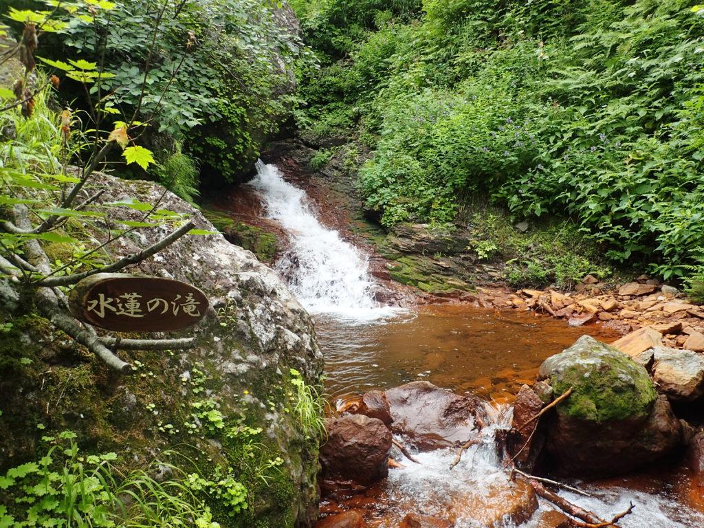 斜里岳の旧道コース登山道の睡蓮の滝