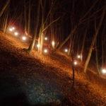 冬の光城山で夜間登山