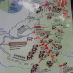 日本百名山全山日帰り登山(146日間で完登) <br>熊対策について