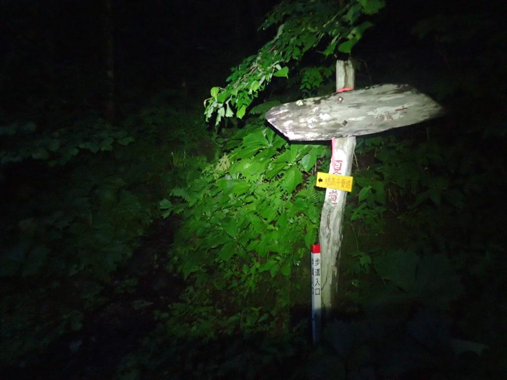 槍ヶ岳へと続く暗闇の右俣林道をブラックダイヤモンドのヘッドライトであるストームの灯りで進む。