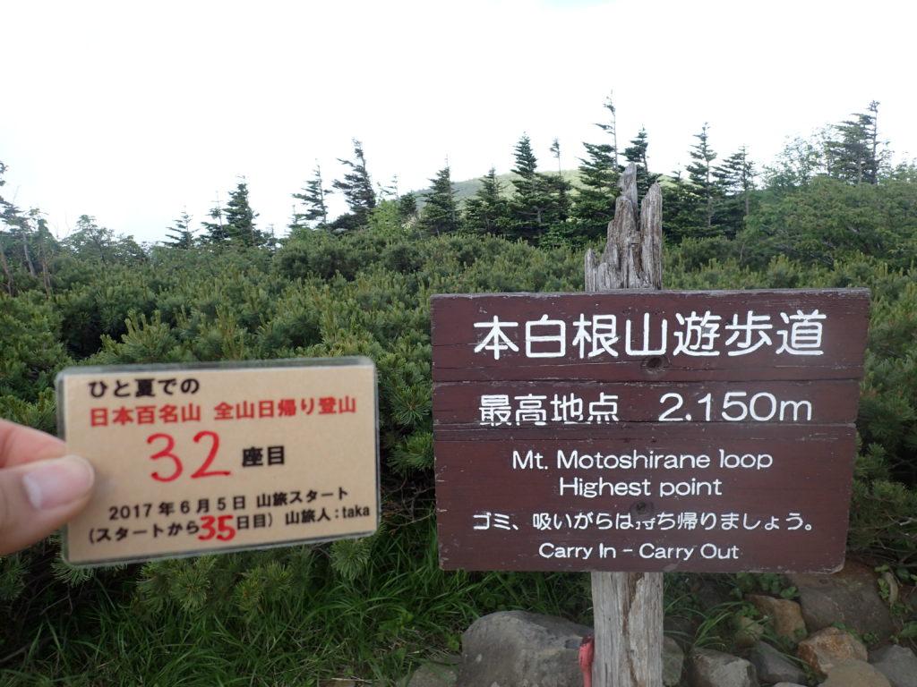 ひと夏での日本百名山全山日帰り登山で登った草津白根山の本白根遊歩道の最高地点で自作の登頂カードで記念写真