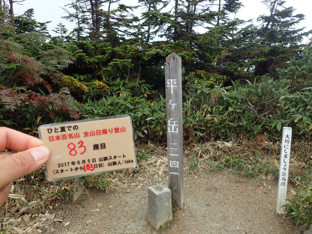 ひと夏での日本百名山全山日帰り登山で登った平ヶ岳の山頂で自作の登頂カードで記念写真
