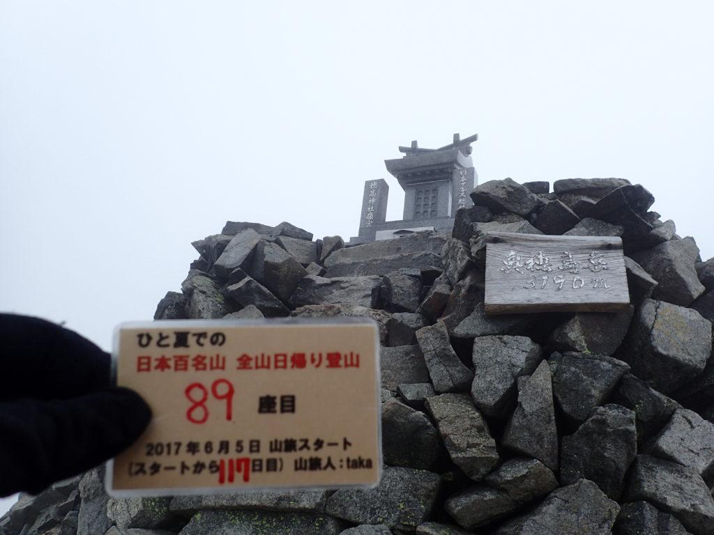 ひと夏での日本百名山全山日帰り登山で登った穂高岳の山頂で自作の登頂カードで記念写真
