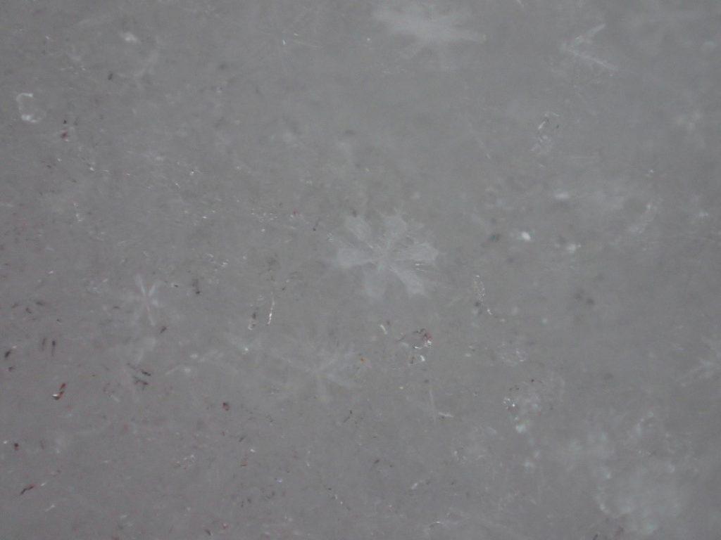 オリンパスのデジタルカメラ(TG-4)の顕微鏡モードで撮影した雪の結晶