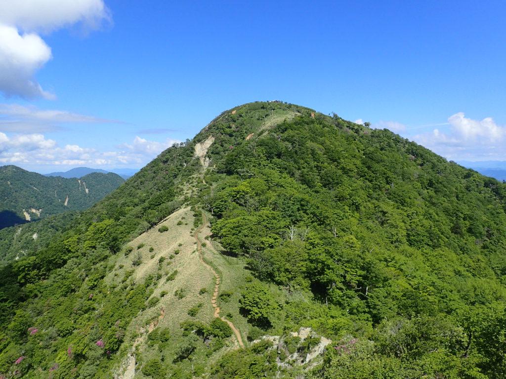 丹沢山方向から見た初夏の蛭ヶ岳