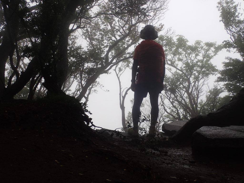 天城山の万二郎岳の山頂は悪天候で展望なし