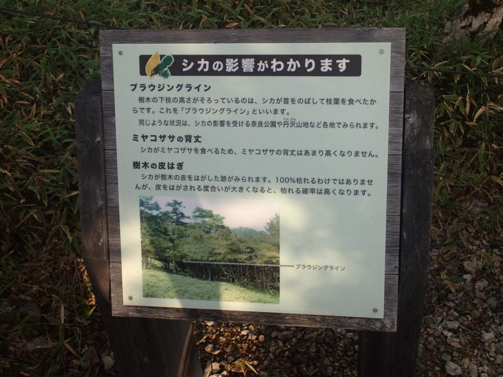 大台ヶ原山にあるブラウジングラインについての説明
