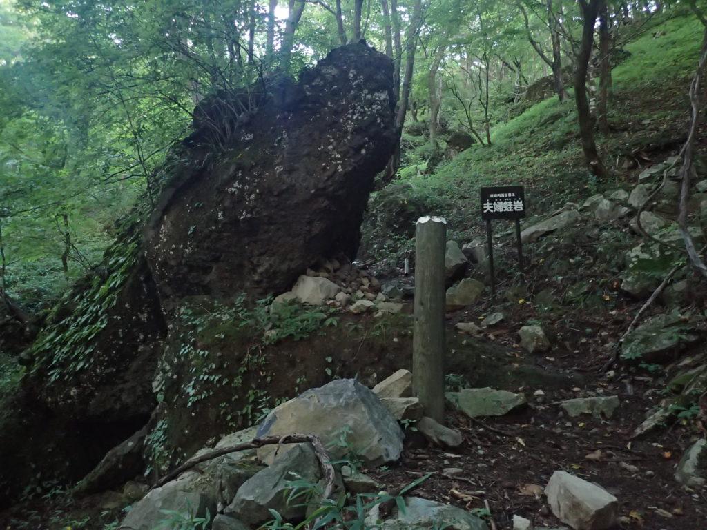 皇海山クラシックルートの夫婦蛙岩