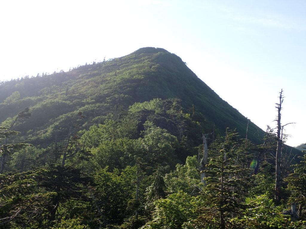 須原尾根ルートから見る武尊山山頂方向