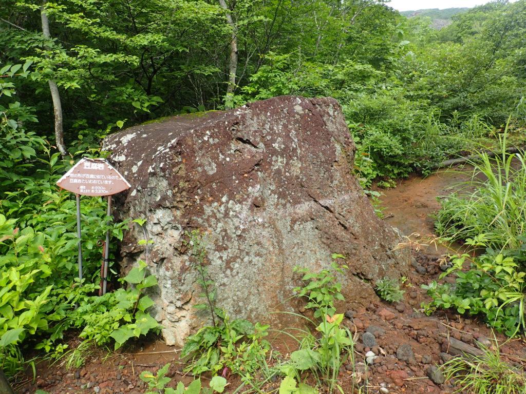 岩手山馬返しルートの豆腐岩