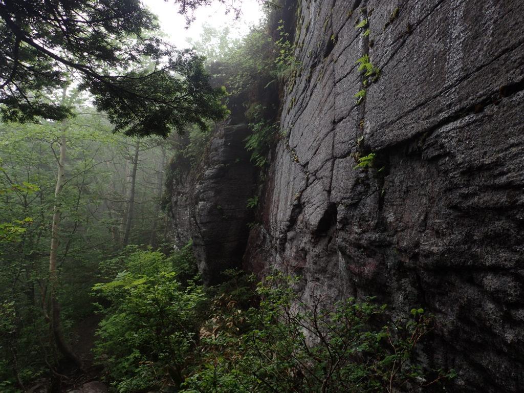 根子岳から四阿山に向かう登山道