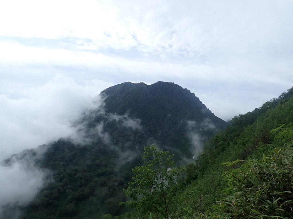 妙高山登山道(大倉尾根)から見る妙高山山頂