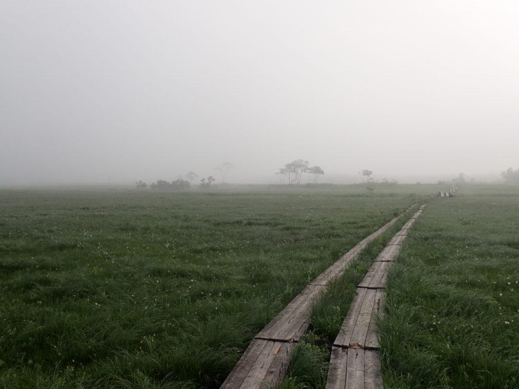 尾瀬の木道からの景色