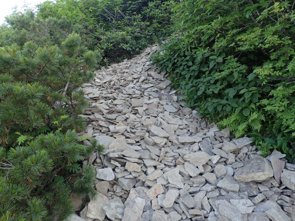 武尊山から剣ヶ峰山に向かう登山道のガレ場