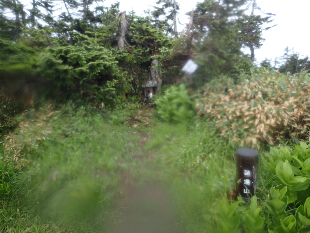 苗場山頂付近の伊米神社