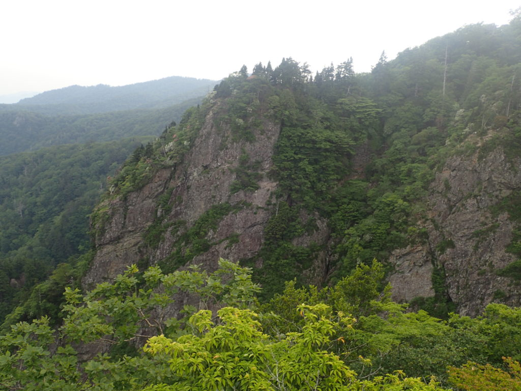 大蛇嵓から見た大台ヶ原山の断崖