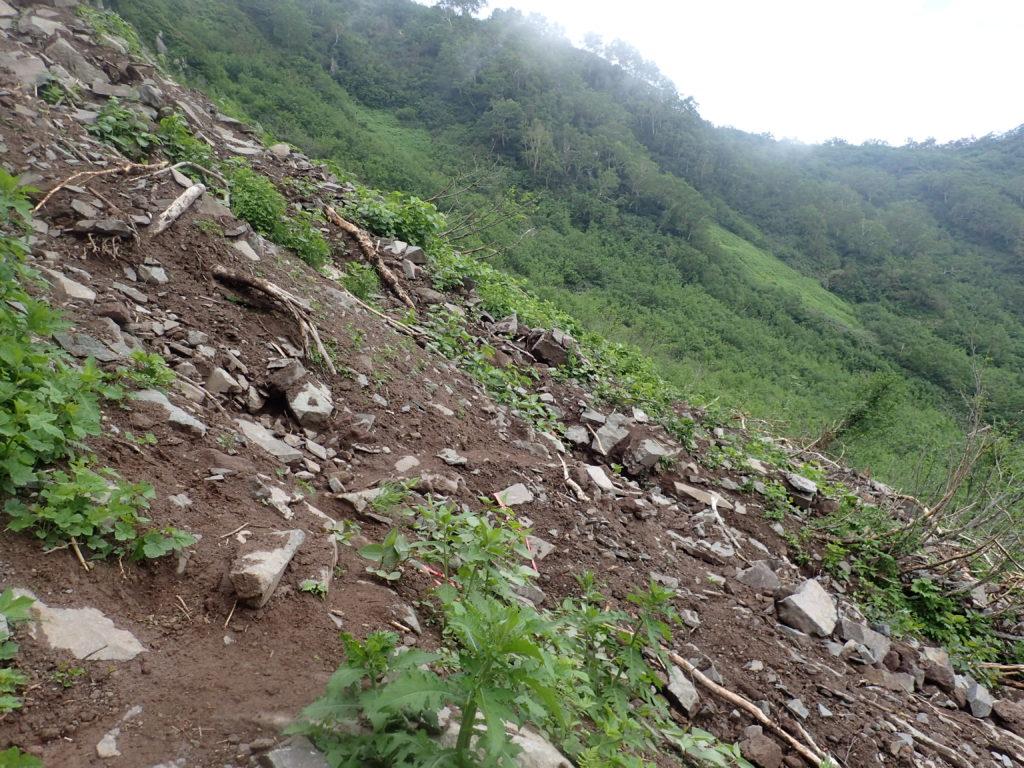 妙高山登山道(大倉尾根)の崩落部分